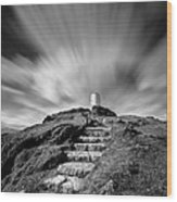 Path To Twr Mawr Lighthouse Wood Print by Dave Bowman