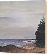 Path To Ucluelet In Winter   Victoria Island  Bc Watercolor  Wood Print by Don F  Bradford