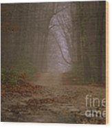 Path To Wolf Den  Wood Print