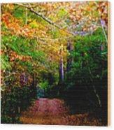 Paths We Choose Wood Print