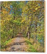 Pathway Along The Ohio And Erie Canal  Wood Print
