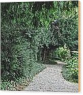 Pathway Of Monks Wood Print