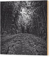 Pathway Through A Bamboo Forest Maui Hawaii Wood Print