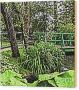 Bridge To Beauty Wood Print