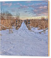 Pathway To Crooked Lake Wood Print by Jenny Ellen Photography