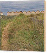 Pathway To The Cabanas Wood Print