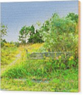 Pathway To The River Wood Print