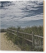 Pathway To The Sea Wood Print by Tom Gari Gallery-Three-Photography
