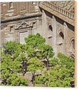 Patio De Los Naranjos Of Seville Cathedral Wood Print