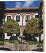 Patio Del Museo Cordobes De Bellas Wood Print