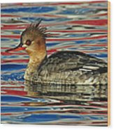 Patriotic Merganser Wood Print