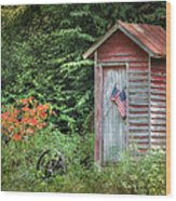 Patriotic Outhouse Wood Print