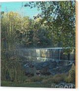 Patsiliga Creek Falls Wood Print