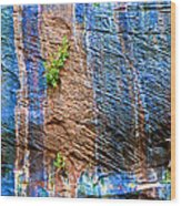 Pattern On Wet Canyon Wall From River Walk In Zion Canyon In Zion National Park-utah  Wood Print