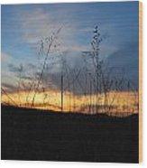 Patterson Hay  Wood Print