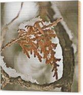 Patti Page Wood Print