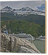 Pause In Wonder At Cruise Ships In Alaska Wood Print by John Haldane