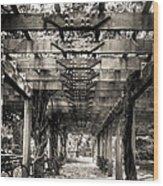 Pavillion Shade At Central Park Wood Print