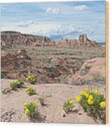 Pawnee Buttes Colorado Wood Print