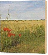 Paysage De Normandie Wood Print