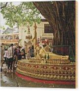 Pbeemai Wood Print