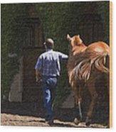 Peace Before The Race - Del Mar Horse Race Wood Print