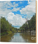 Peace River 4 Wood Print