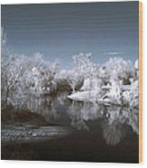 Peace River North Near Infrared Arcadia Florida Usa Wood Print