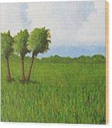 Peace River Prairie Wood Print
