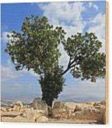 Peace Tree Wood Print