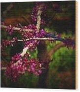 Peace With Purple Wood Print