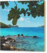 Peaceful Beach St. Thomas Wood Print
