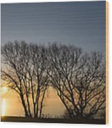 Peaceful Blues And Golds  Wood Print