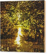 Peaceful Day In Summer Wood Print