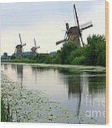 Peaceful Dutch Canal Wood Print by Carol Groenen