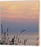 Peaceful Evening Wood Print