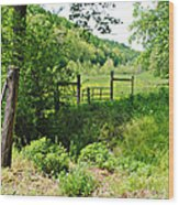 Peaceful Field Wood Print by Stephanie Grooms