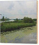 Peaceful Kinderdijk Wood Print