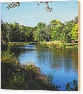 Peaceful Lake Wood Print by Susan Savad