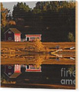 Peaceful Morning Wood Print by Steven Reed
