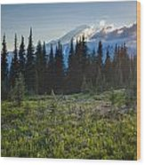Peaceful Mountain Flowers Wood Print