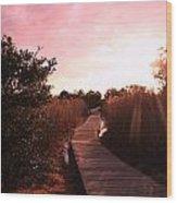 Peaceful Path Wood Print