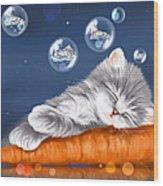 Peaceful Sleep Wood Print