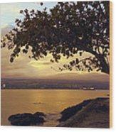 Peaceful Sundown On Hilo Bay - Hawaii Wood Print