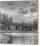 Peaceful Times 2 Black And White Wood Print