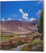 Peaceful Valley II Wood Print
