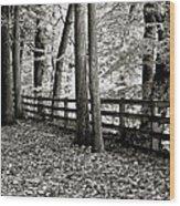 Peaceful Walk Wood Print