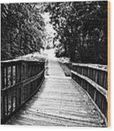Peaceful Walkway Blackwhite Wood Print by Stephanie Grooms