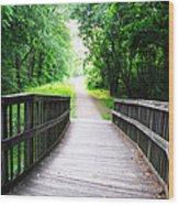 Peaceful Walkway Wood Print by Stephanie Grooms