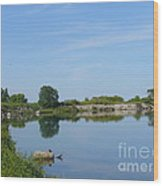 Peaceful Water Reflection At Tommy Thompson Park Wood Print